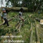 Apa saja ciri-ciri Ekonomi di Indonesia ?
