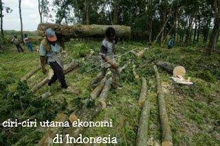 ciri ciri utama ekonomi di Indonesia